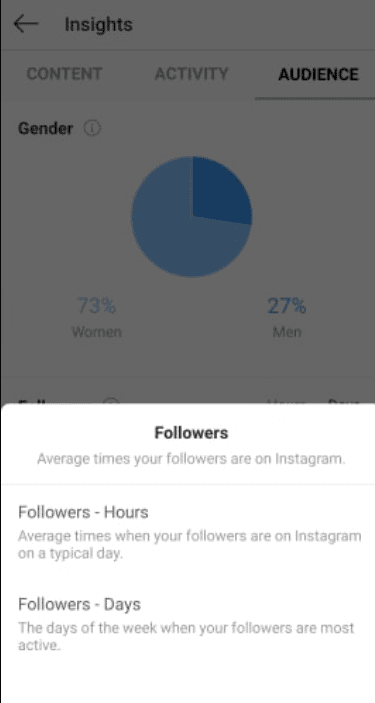 insta audience insights