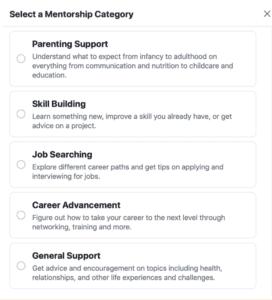 mentorship category